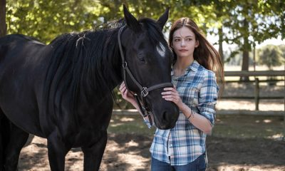 Black Beauty - Disney+