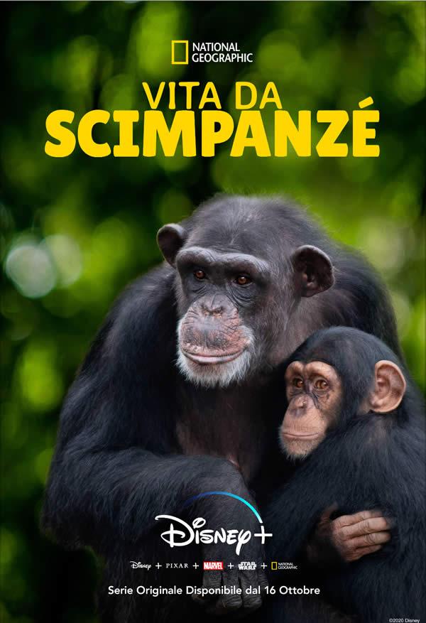 Vita da Scimpanzé - Disney+